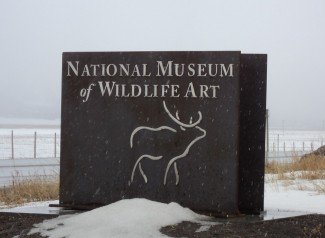 Be astounded with the world-renowned art in the National Wildlife Art Museum.